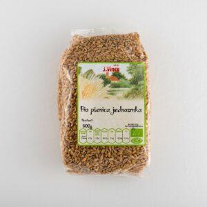 Bio pšenica jednozrka